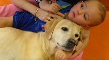 13_Tiere-helfen-heilen