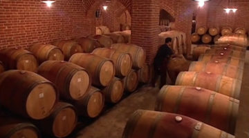 wein_tradition_und_technik